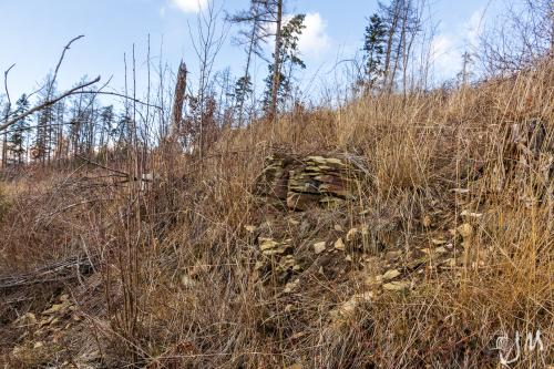 Zřícenina hradu Zátor