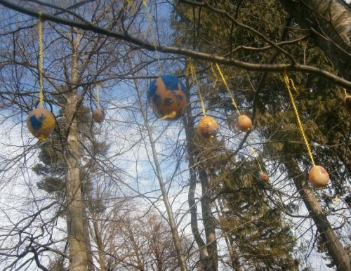 zdobení stromu skořápkovníku 4.4.2012